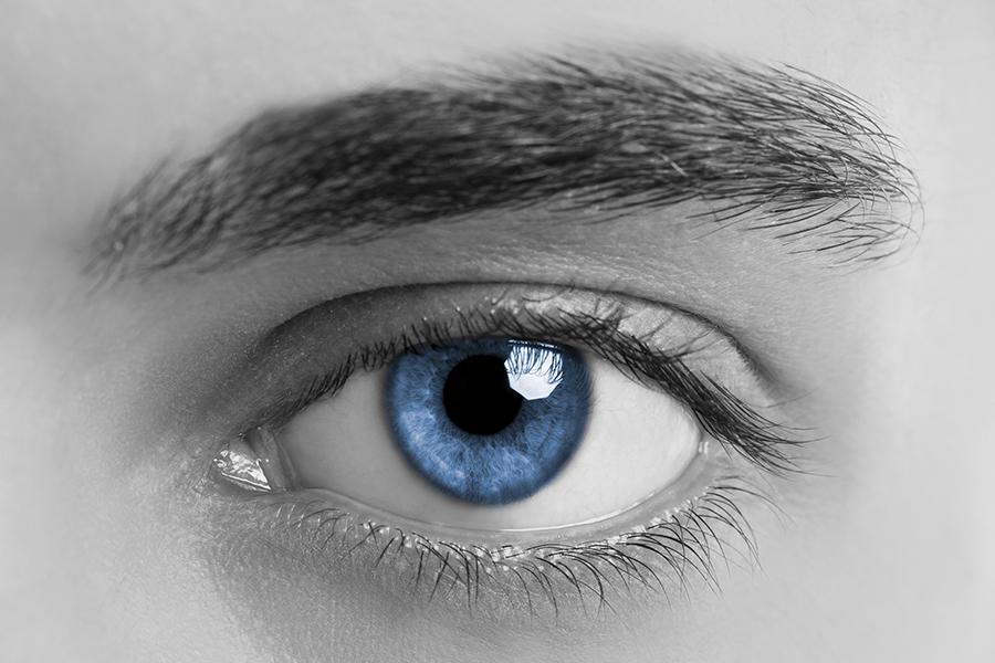 male_eyebrow